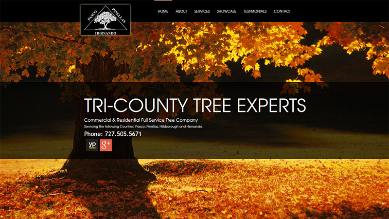 TRI-COUNTY TREE EXPERTS