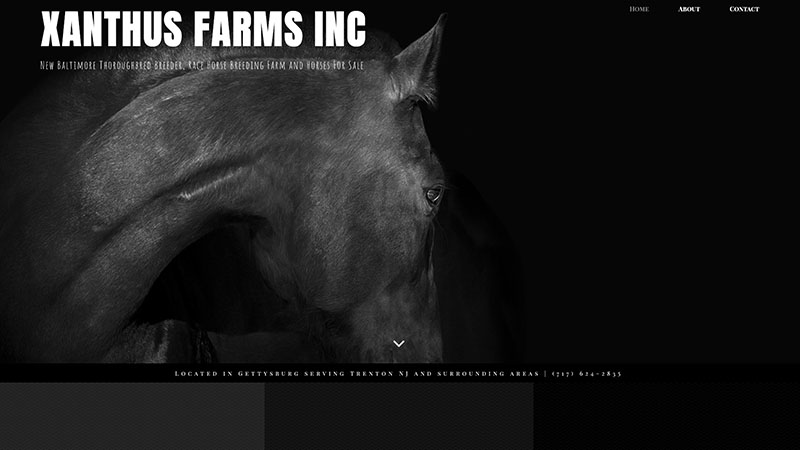 Xanthus Farms INC