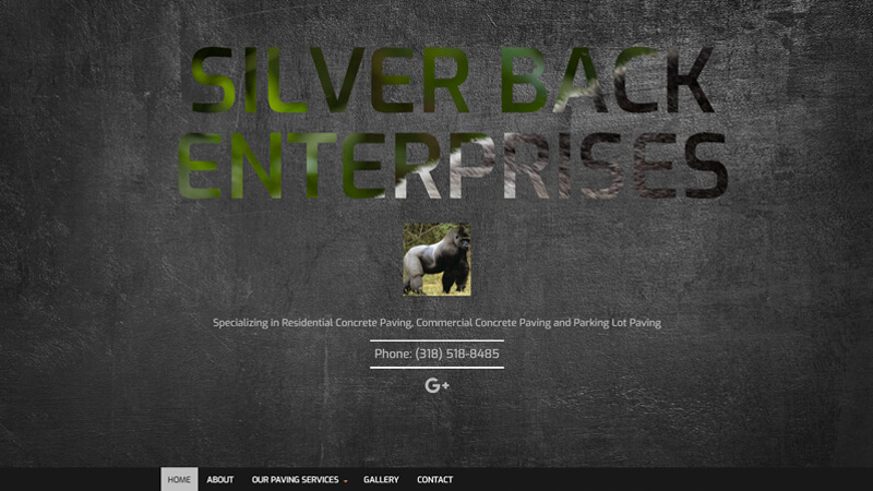 Silver Back Enterprises
