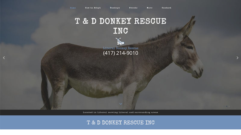 T & D Donkey Rescue Inc