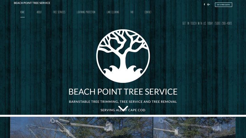 Beach Point Tree Service