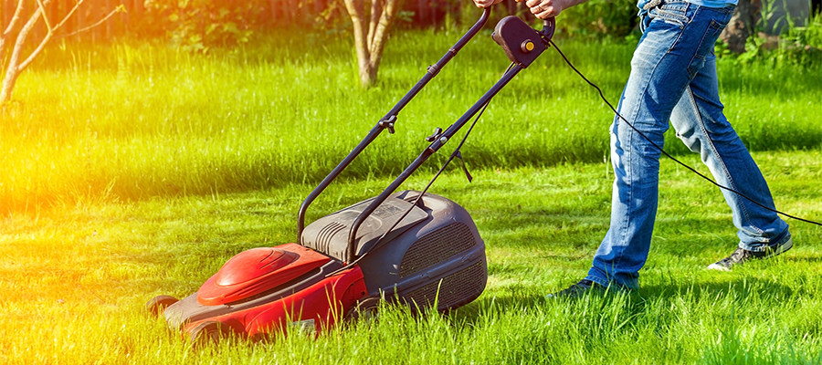 top 7 problems facing your landscaping business